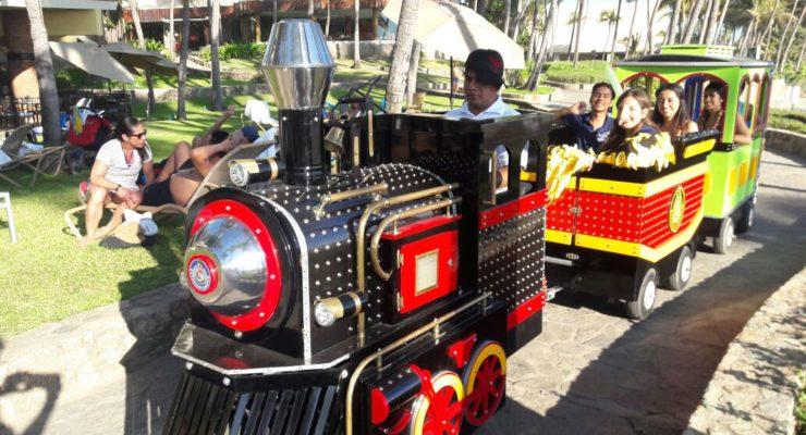 Fabricación, Venta y Renta de Trenes Eléctricos Infantiles de paseo  para parques,  plazas y  centros comerciales  nuevo y usado, trenes para niños
